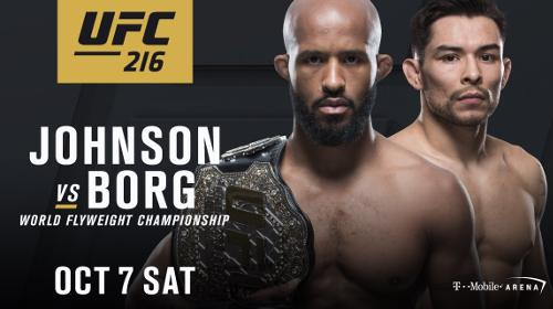Demetrious Johnson vs Ray Borg