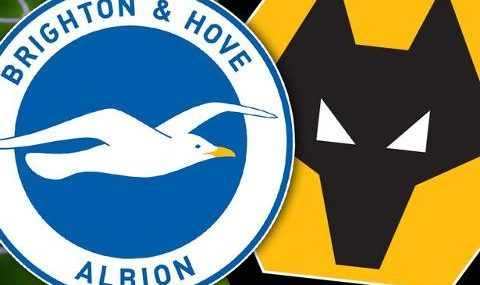 Brighton vs Wolves EN VIVO Hora, Canal, Dónde ver Jornada 16 Premier League 2019-2020