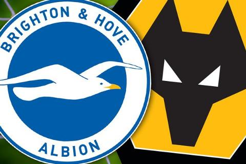 Brighton vs Wolves