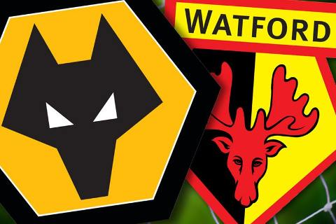 Wolves vs Watford